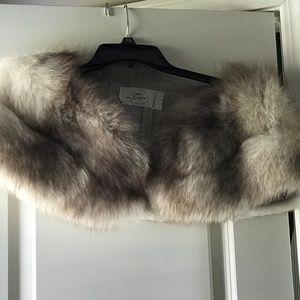 Norwegian Blue Fox Fur
